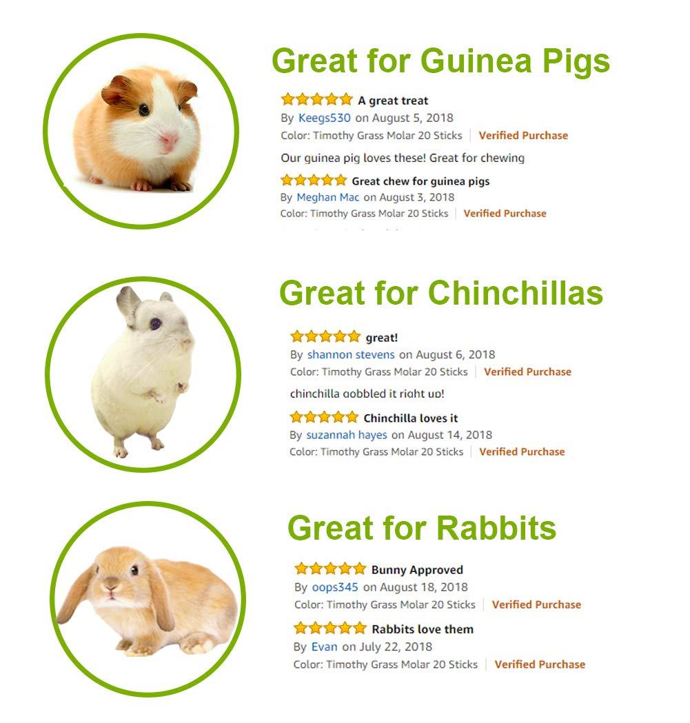Amazon.com: ULIGOTA Timothy - Palos de hámster para masticar ...