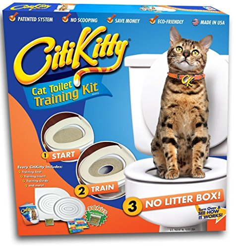 CitiKitty As Seen on