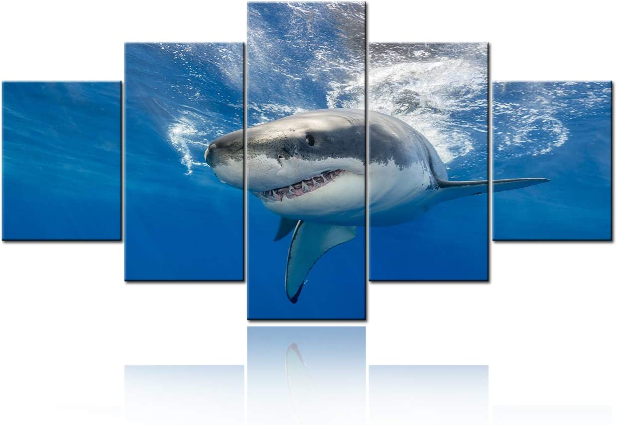 """5 Piece Blue Wall Art Painting Great White Shark Catching Fish At Guadalupe Island Pictures Prints On Canvas Animal The Picture Decor Oil For Home Modern Decoration For Living Room - 60""""W x 32""""H"""