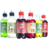 Summer Cocktail flavour Slush Puppie Syrup 6 pack