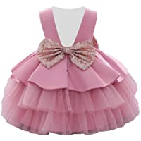 AIMJCHLD 6M-5T Baby Girls Backless Pageant Wedding Party Sequins Bowknot Flower Dresses