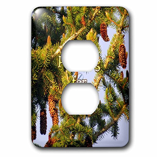 3dRose Jos Fauxtographee- Pine Tree - Pining for you written over a Pine Tree in PV UT - Light Switch Covers - 2 plug outlet cover (lsp_255943_6)