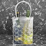 Gel Wine Bottle Chill Cooler Ice Bag - Freezer Bag- Vodka- Tequila Chiller- Cooler- Carrier, Set of 2