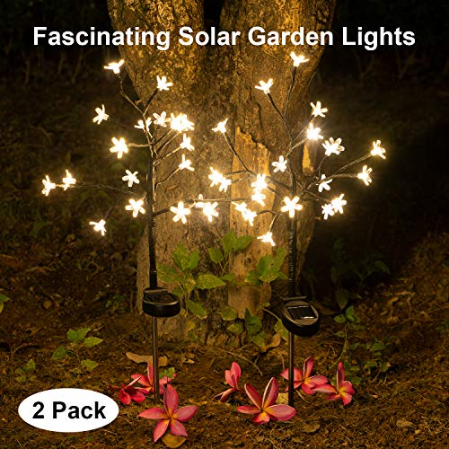 Solar Garden Lights Outdoor Beautiful Bright LED Solar Powered Landscape Lights for Pathway,Yard,Patio,Deck,Walkway Christmas Decoration- 2019 Solar Flickering Tree Lights (Warm White-2Pack)