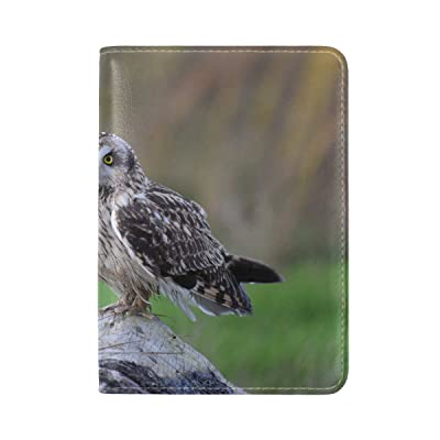 Animal Owl Short-eared Flying Walking Gray Adorable Wild Jumping Leather Passport Holder Cover Case Travel One Pocket