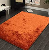 CHIC RUGZ AMORE 5X7RUST Living Room Shag Area Rug, 5′ x 7′, Rust For Sale