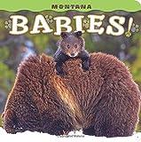 Montana Babies!