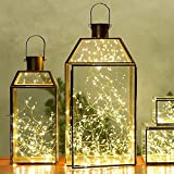LED SopoTek 10ft 30 LEDS Starry Lights Fairy Lights Copper LED Lights Strings AA Battery Powered Ultra Thin String Wire(30 Leds Warm white Battery not included)