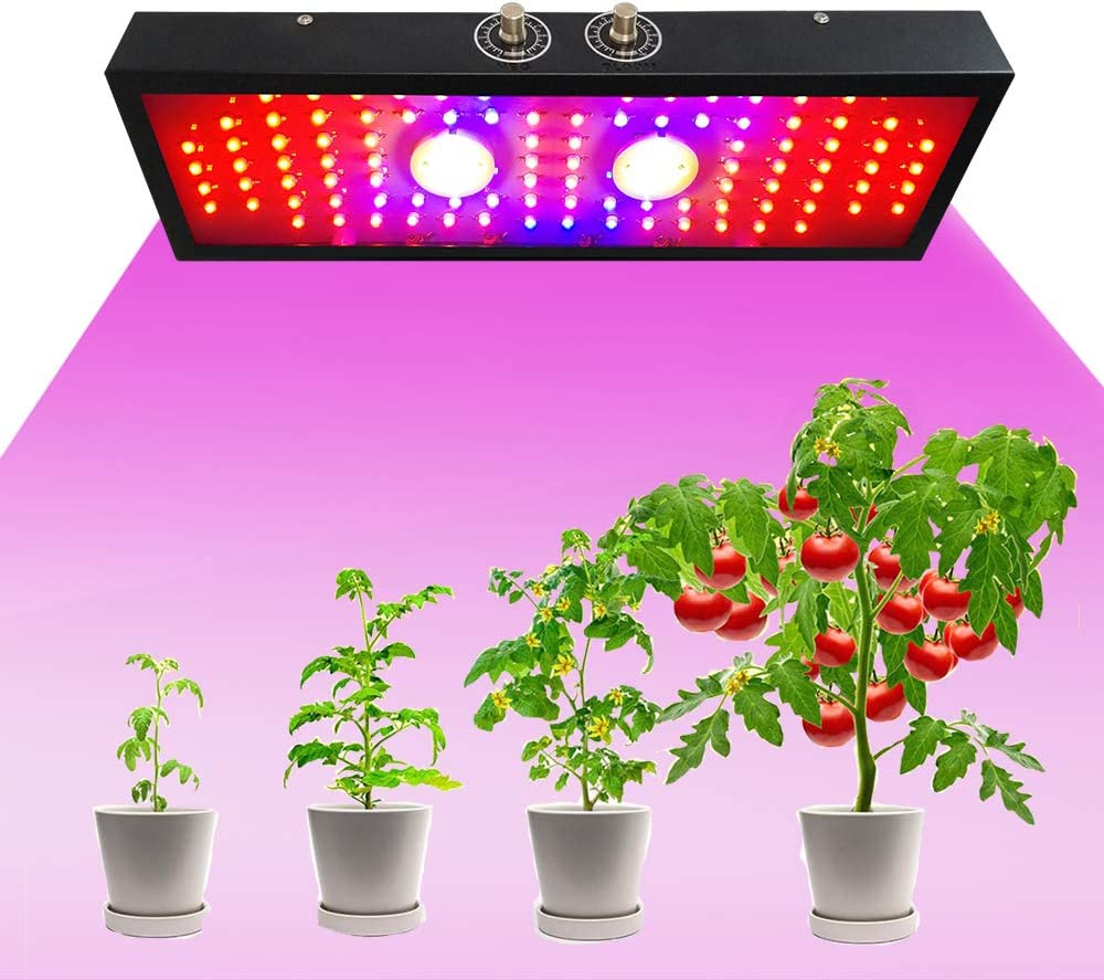 LED Grow Lights for Indoor Plants Popular standard Growing Special Campaign Plant 2000W L Dimmable