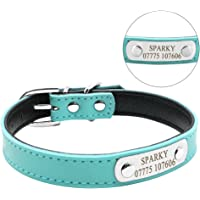 Didog Adjustable Leather Padded Custom Dog Collar with Engraved Nameplate,Fit Small Medium Dogs,Blue,XS Size