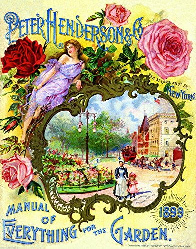 (A SLICE IN TIME 1899 Henderson Roses Vintage Flowers Seed Packet Catalogue Advertisement Poster)