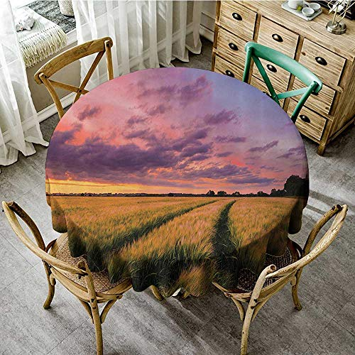 familytaste Table Decoration Supplies Farm House Decor Collection,Flowing Crop at Sunset Morning in Nature Countryside Style Cloudscape Scene Print,Yellow Green D 36