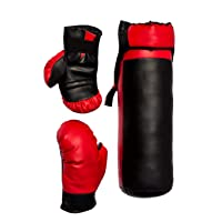 Victall Boxing Kit with Punching Bag for Kids (Colour May Vary, 52 cm)