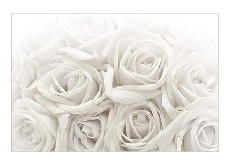 Apalis Rosentapete - Vliestapete - Weiße Rosen - Blumen Fototapete Breit |  Vlies Tapete Wandtapete Wandbild Foto 3D Fototapete für Schlafzimmer ...