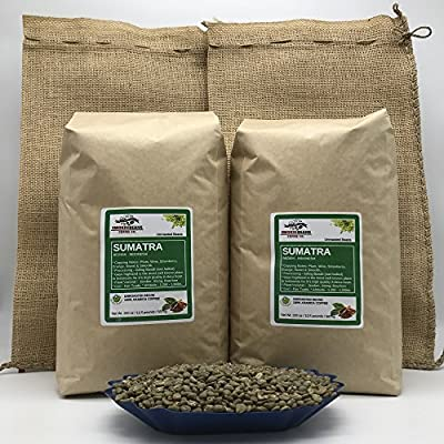 SUMATRA MANDHELING Specialty-Grade, CURRENT-CROP Green Unroasted Coffee Beans – Considered the Region's Finest and a Staple of Coffee Shops Across America