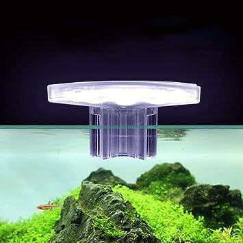 AUOKER Luz LED para Acuario, Mini Impermeable USB 8 LED luz de Tanque de Peces