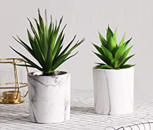 LITA Artificial Succulent Plants Fake Succulents Small Plants in White Ceramic Potted for Indoor Decor Office Room Desk Decoration 2 Pots (2 Pack)