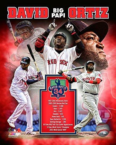 David Ortiz Boston Red Sox Career Portrait Plus Photo (8