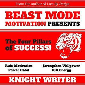 The Four Pillars of Success Audiobook