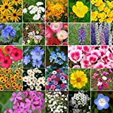 Search : Non GMO Bulk Coastal California Wildflower Seed Mix (1/2 Lb) 422,000 Seeds