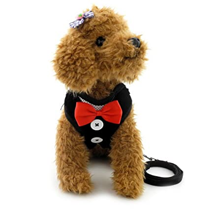 Pet Supplies : smalllee_lucky_store Bow Tie Small Dog Tuxedo Harness