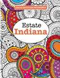 Libro da Colorare super RILASSANTE 6: Estate Indiana: Volume 6