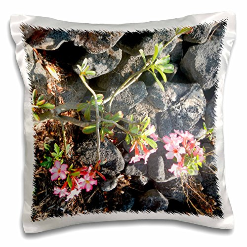 Sandy Mertens Flower Designs - Light Pink Hibiscus Plants State Flower of Hawaiian, Growing by Lava Rocks - 16x16 inch Pillow Case (pc_107138_1)