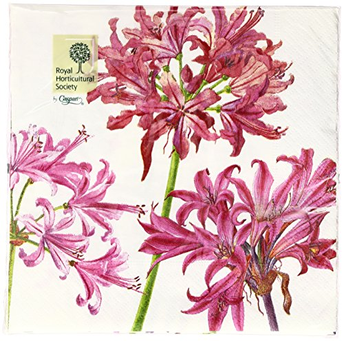 Entertaining with Caspari Surprise Lily Paper Luncheon Napkins, Ivory, Pack of 20