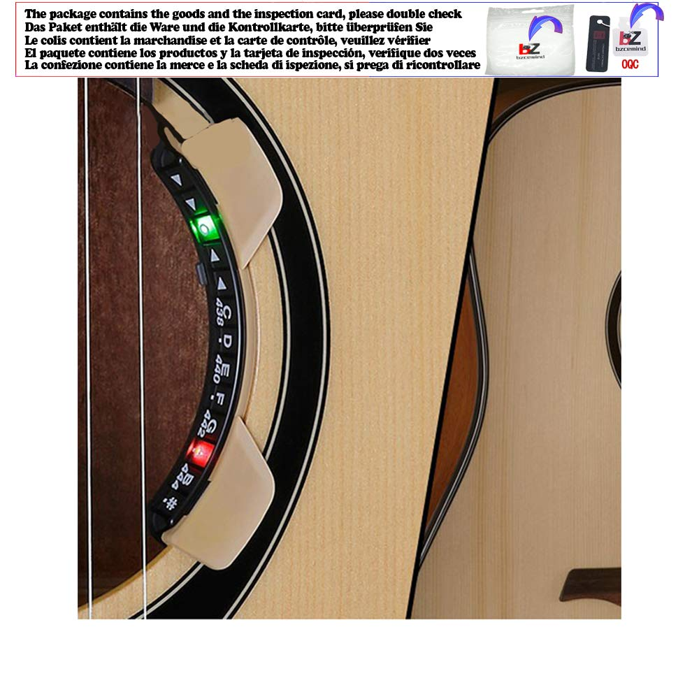 Rossi Rosa Environmental 2 Model Talla /única Medida 20 x 14 x 15 cm