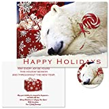 Polar Bear Christmas Personalized Christmas Cards with Free Matching Seals (Set of 24)