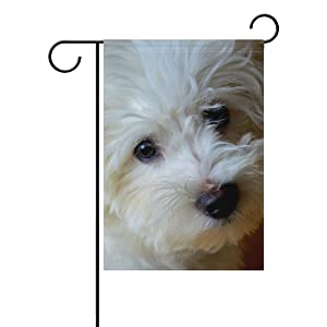 BlueViper White Dog Cute Bichon Frise Garden Flag Banner 12 x 18 Inch Decorative Garden Flag for Outdoor Lawn and Garden Home Décor Double-Sided