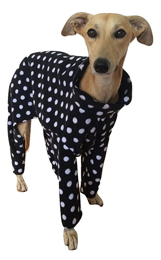 Black Polka Dot Onesie - Pijama para galgo italiano: Amazon.es: Productos para mascotas