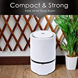 Air Purifier, VANTAKOOL Portable Air Purifier Anion Sterilization Air Purifier with True HEPA Filter and Night Light, Remove Cigarette Smoke, Odor Smell, Bacteria