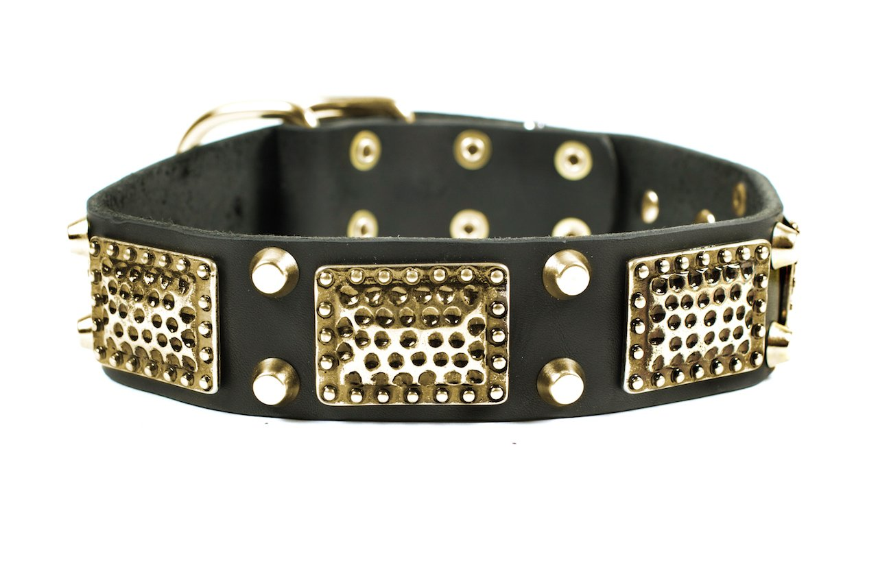 Dean and Tyler  THOR  Dog Collar Solid Brass Hardware Black Size 76cm x 4cm Width. Fits neck size 28 Inches to 32 Inches.