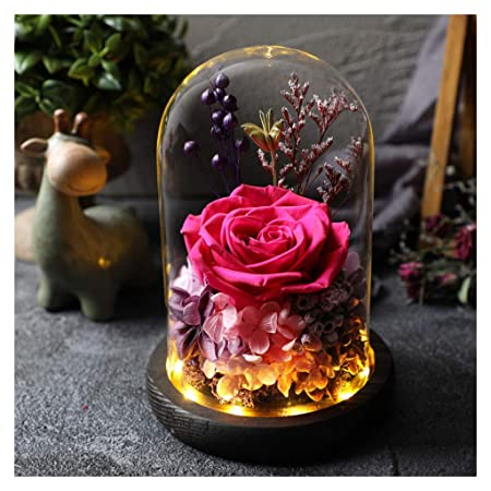ALYR Rosa Encantada, Rosa eterna Conservada Flor Caja de ...