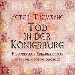 Tod in der Königsburg (Schwester Fidelma ermittelt 7)