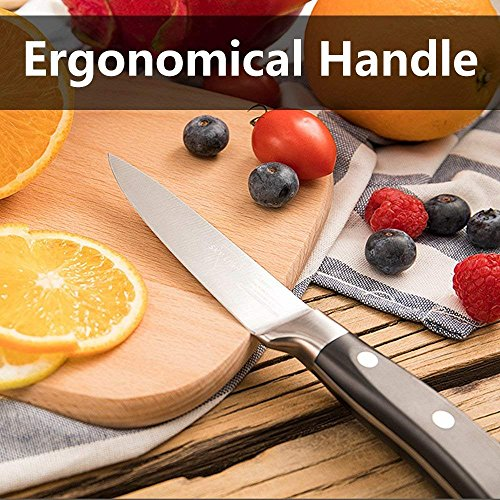 Paring Knife Fruit Knife Peeling Knife,4 Inch German HC Stainless Steel Sharp Blade with Non Slip Ergonomic Handle by SKY LIGHT (Image #3)