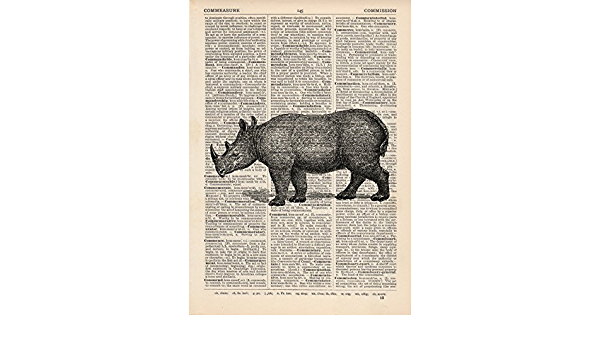 Rhino Dictionary Illustration Art Print Vintage Zoo Wild ... - Amazon.com