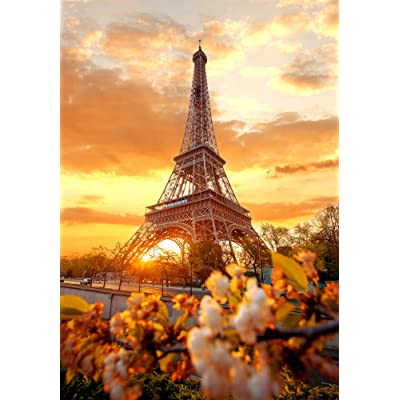 Eiffel Tower in The Glow 1000 Piece Jigsaw Puzzle [Pouch Included]: Toys & Games