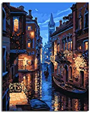 Diy Oil Paint by Number Kit,Painting Paintworks Venice Night Drawing with Brushes 16*20 inch Christmas Decor Decorations Gifts(Without Frame)