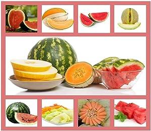 Heirloom Fruit Seeds- Non Hybrid- Real Survival Seeds. Honeydew Green Melon, Banana Melon, Honey Rock Cantaloupe, Watermelon Crimson Sweet, Sugar Baby Watermelon Seeds, Hales Best Jumbo Melon,Non GMO