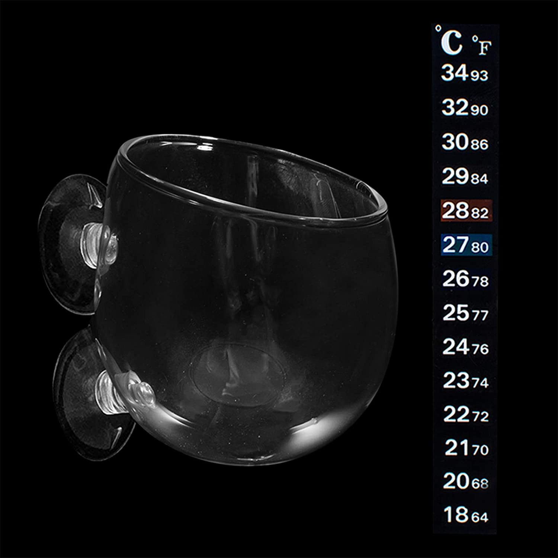 IAFVKAI Aquatic Plant Cup Pot Crystal Glass Planter Holder for Fish Tank Aquarium Decor Aquascape with Suction Cups