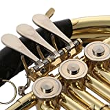 ammoon French Horn B/BB Flat 3 Key Brass Gold