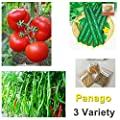 3 Variety, 600+ Heirloom Vegetable Seeds Pepper Tomato Cucumber Non GMO Mixed Organic Seeds For Planting
