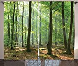 Ambesonne Farm House Decor Collection, Morning In The Forest Freshness Natural Environment Magical Outdoor Picture Print, Living Room Bedroom Curtain 2 Panels Set, 108 X 84 Inches, Green Brown