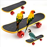 Sanwooden Funny Parrot Toy Durable Mini Skateboard Parrot Bird Cage Toy Chew Training Ornaments Gift Pet Supplies