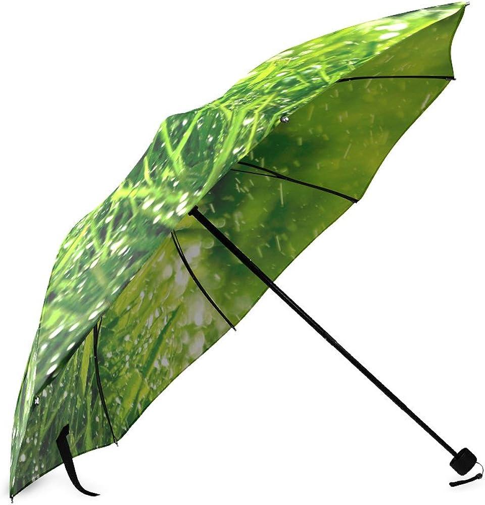 Umbrella Grass Custom Umbrella Automatic Folding Umbrella Rainproof /& Windprrof