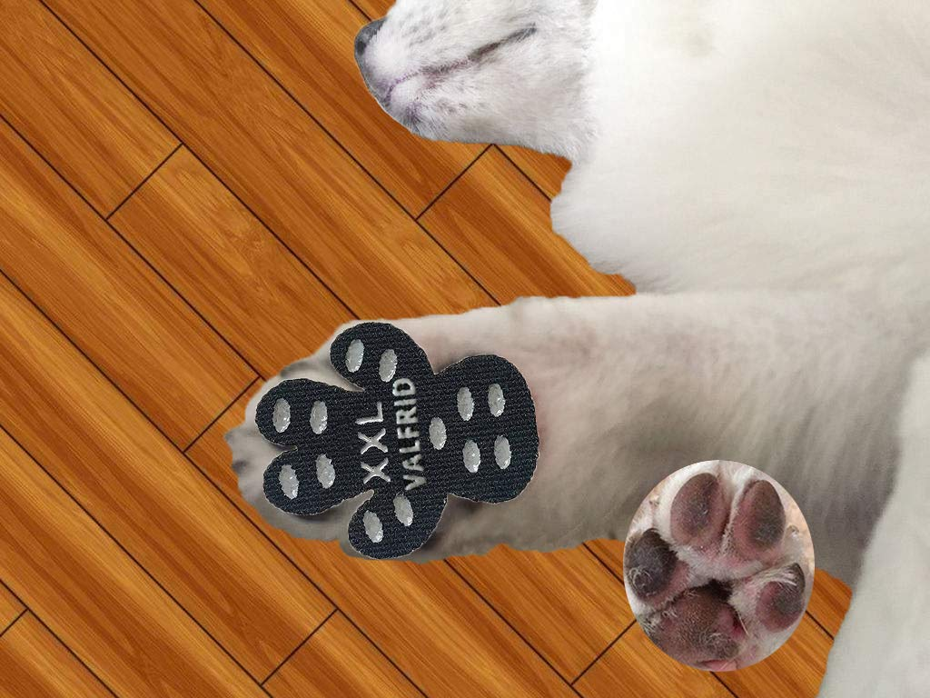 VALFRID Dog Paw Protector Rugged Anti Slip 24 Pieces,Disposable Self Adhesive Resistant Dog Shoes Booties Socks Replacemen XXL