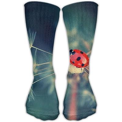 Unisex Tube Socks Crew Ladybirds Soccer Comfort Over The Calf Stockings For Sport And Travel