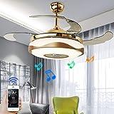 Fandian 42'' Modern Ceiling Fans with Light Smart